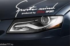 Sports Mind Ford